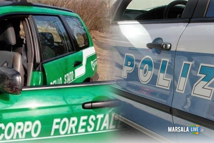 Poliziae Forestale