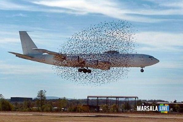 Atterraggio emergenza Ryanair marsala live