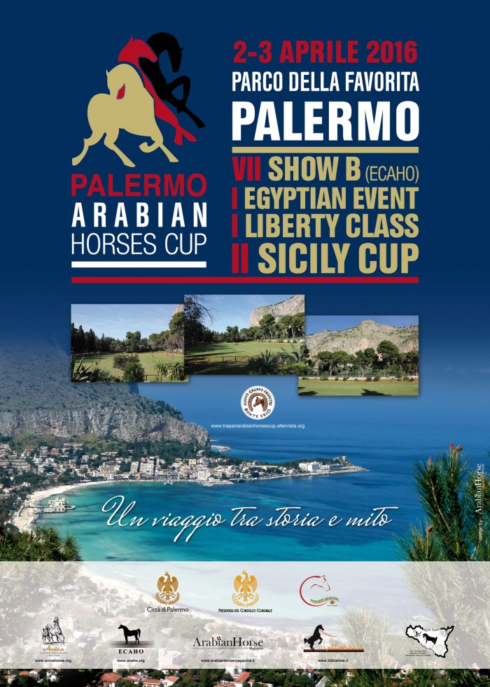 Palermo Arabian Horses Cup 2016 marsalalive