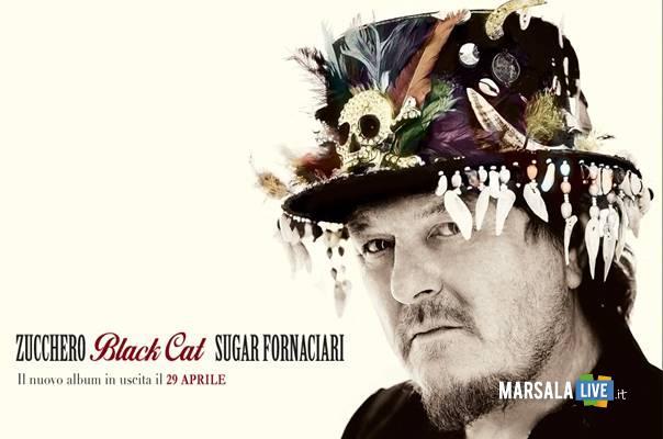 black cat zucchero sugar fornaciari 29 aprile marsalalive