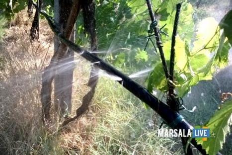 irrigare-leopoldo-falco