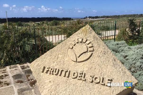 I-Frutti-del-Sole-Marsala