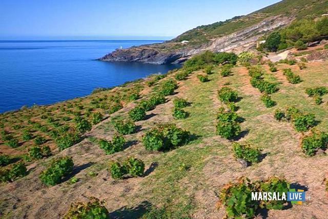 Istituito-Parco-nazionale-Pantelleria