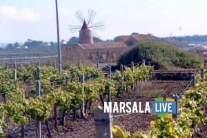 Marsala-Concorso-enologico-La-Selezione-del-Sindaco