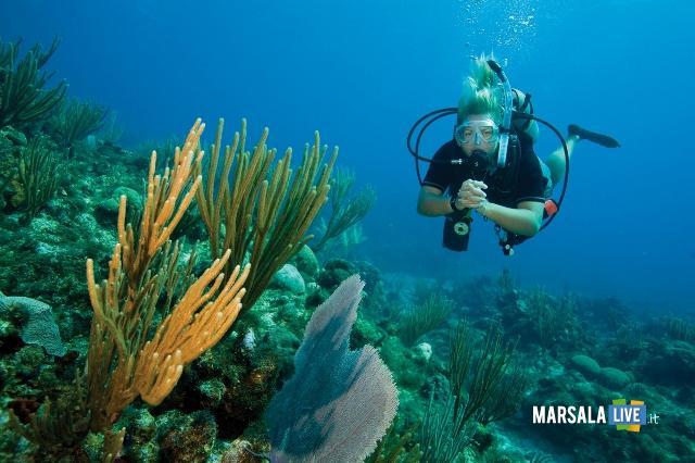 punta-d-alga-marsala