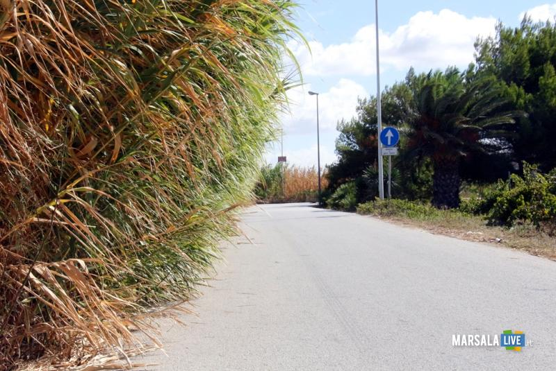 litorale Stagnone marsala canneto -