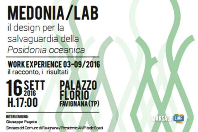 medonia-lab