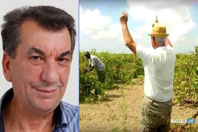 enzo-maggio-crisi-vitivinicola-agricoltura-petrosino-marsala