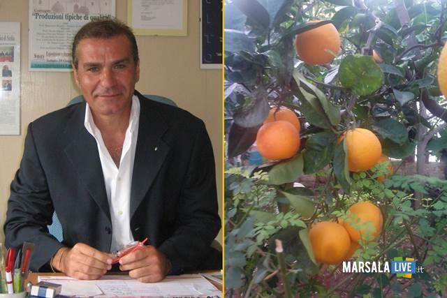 giacomo-alberto-manzo-arance-di-sicilia