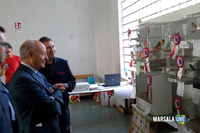 marsala-mostra-ornitologica-campioni-di-razza