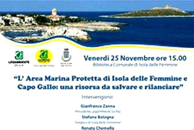 area-marina
