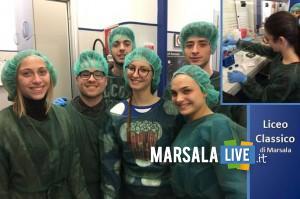 Liceo-Classico-di-Marsala-al-policlinico-di-palermo