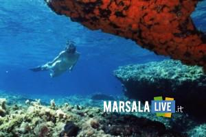 Area-marina-protetta-delle-Egadi-EuDi Show-Bologna