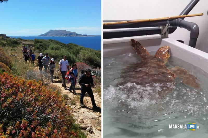 AMP-e-WWF-Levanzo-e-Centro-primo-soccorso-tartarughe-marine.-