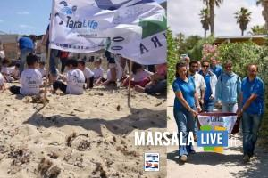 Area-Marina-Protetta-liberazione-della-tartaruga-Teo-Programma-Life