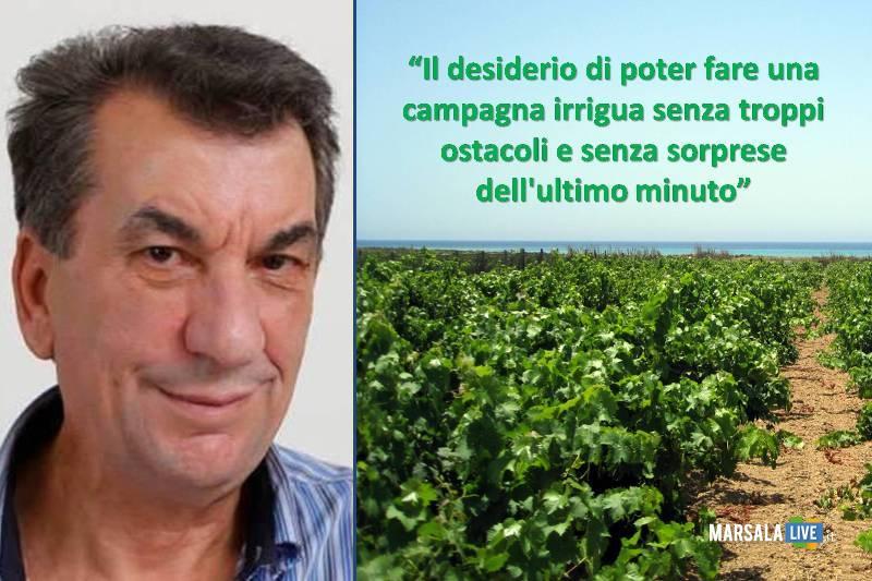 enzo-maggio-irrigazione-uva-vigneto
