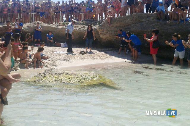 tartaruga diventa simbolo dell'installazione Plastic alle Egadi (3)