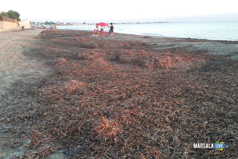 Pulizia spiagge a Marsala Antonino Gerardi