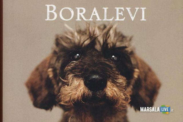 libro Boralevi.