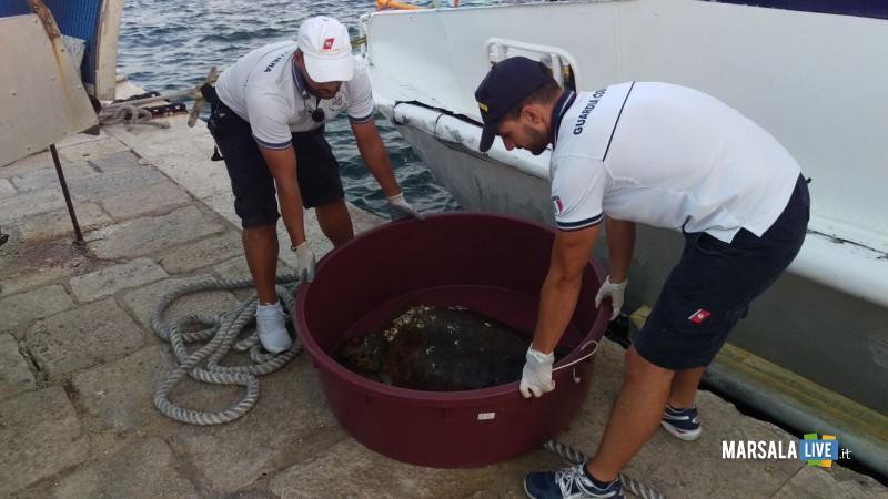 Guardia Costiera Marsala soccorre Caretta Caretta (1)