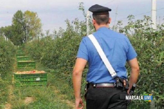controllo-carabinieri-aziende-agricole