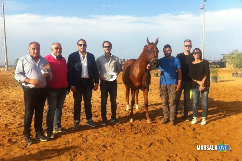 Trapani-Arabian-Horses-Cup-San-Vito-Lo-Capo (1)