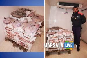 Sequestrati 3 quintali di prodotto ittico Marsala
