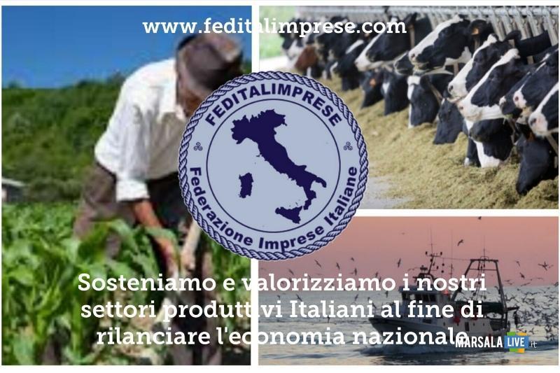 Gianluca Micalizzi-Feditalimprese