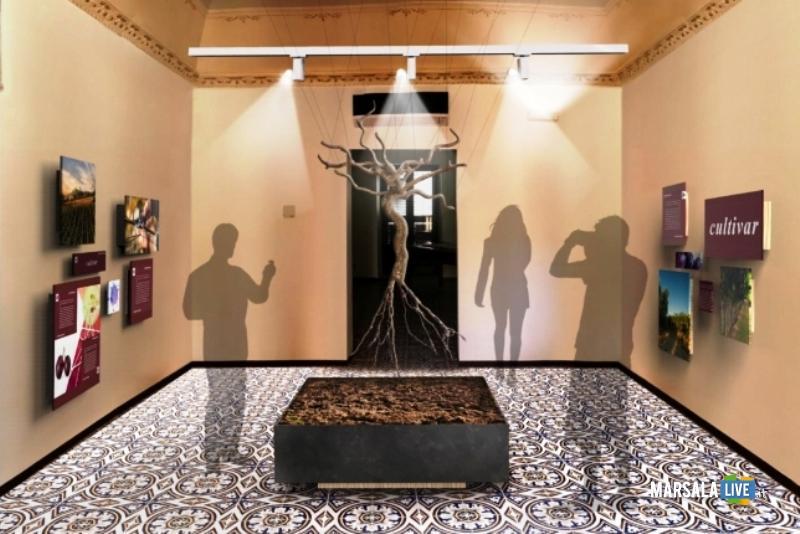 progetto museo del Vino marsala - una sala didattica