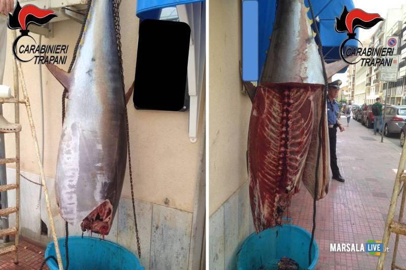 Trapani Sequestrato dai Carabinieri tonno in cattivo stato di conservazione