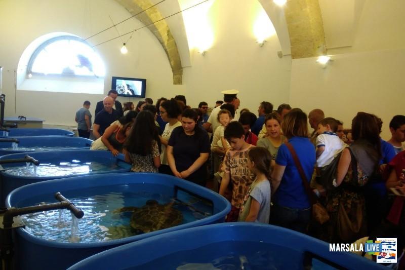 stabulario Centro Primo Soccorso per Tartarughe AMP Isole Egadi (2)