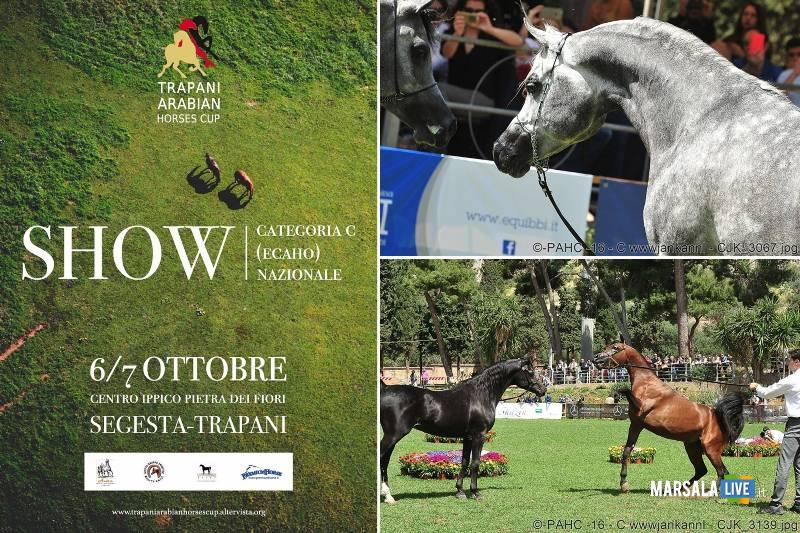 Trapani Arabian Horses Cup 2018 - Buseto Palizzolo