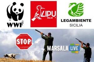 stop caccia sicilia