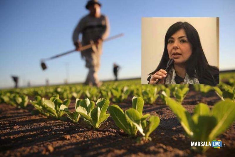 Vendita diretta prodotti agricoli, Cannata Ars