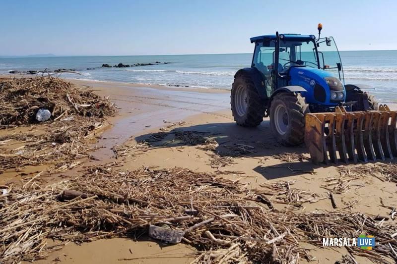 canne e sterpaglie spiaggia Tre Fontane_2_14.11.2018
