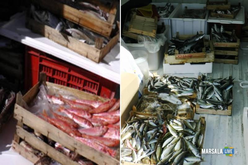 Controlli al mercato di Trapani - Pesce