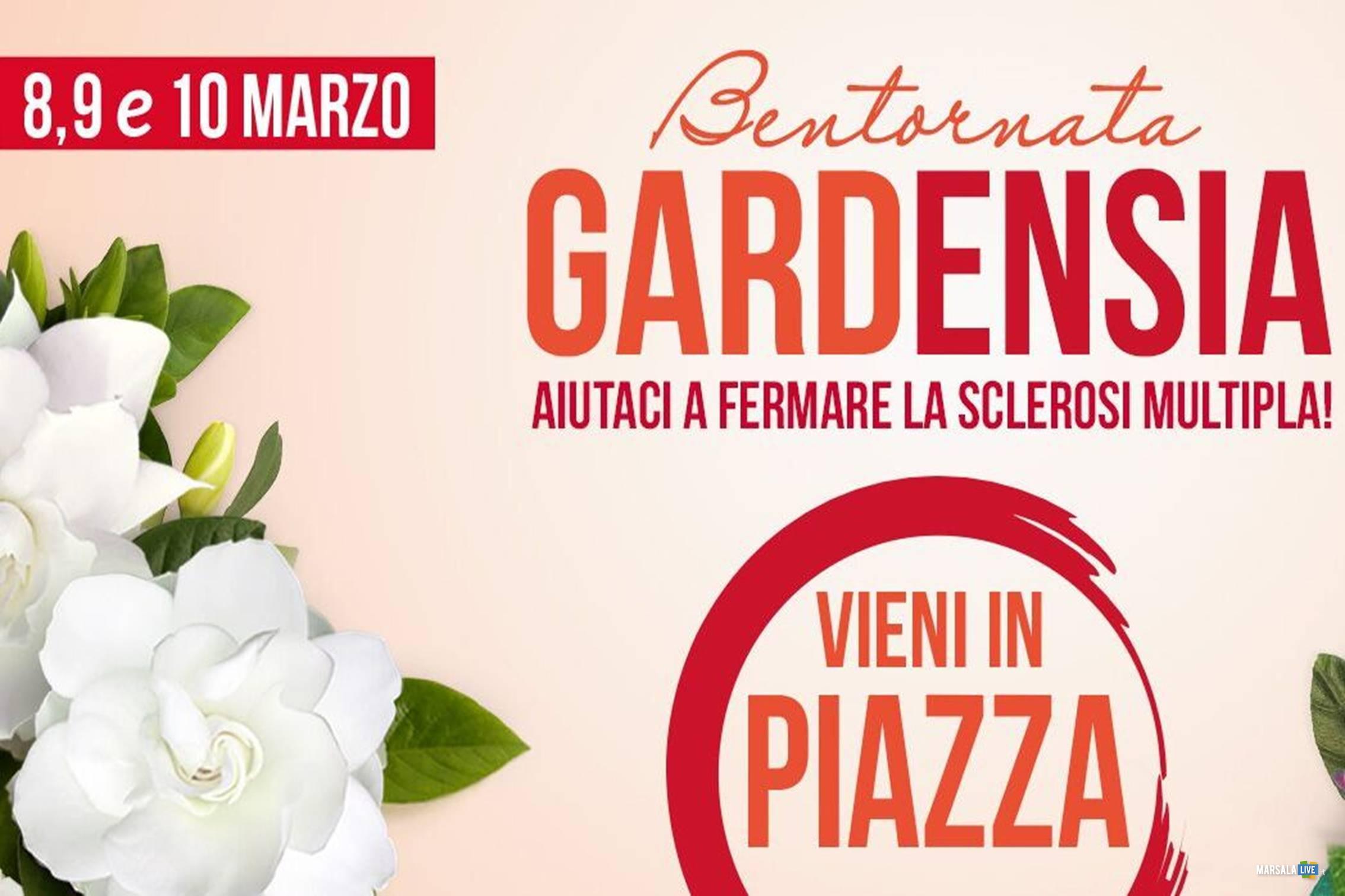 Gardensia_piazze