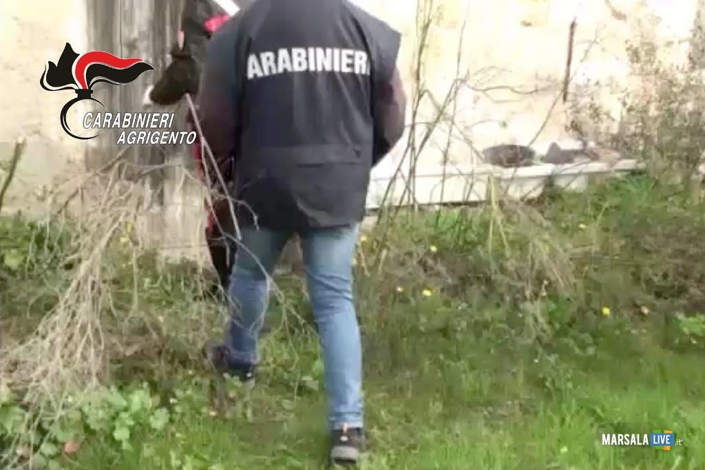 carabinieri menfi e gibellina