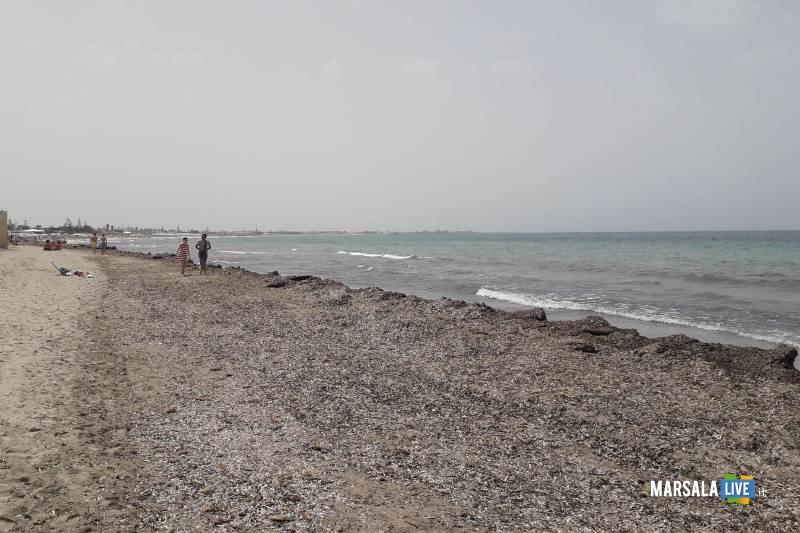 Antonino Gerardi, degrado spiagge Marsala (2)
