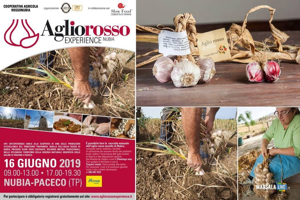 Nubia Paceco, Aglio Rosso Experience 2019