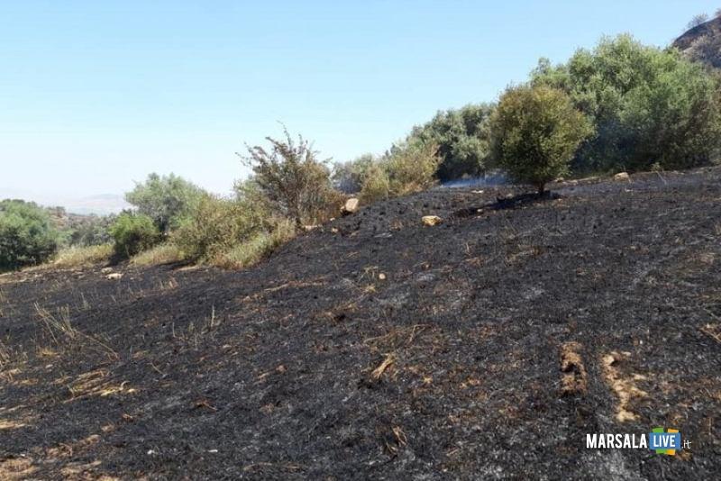 Incendi in Sicilia. Solo cenere e carbone per il Governo Regionale !