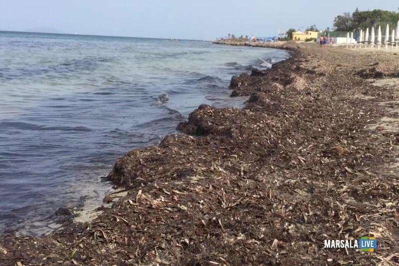 Marsala-spiagge-2-giugno-2019-l (1)