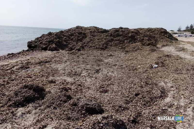 Spiagge-2-giugno-2019