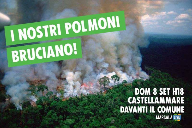 SOS Amazonia, castellammare