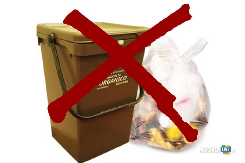 stop alla raccolta dell'organico