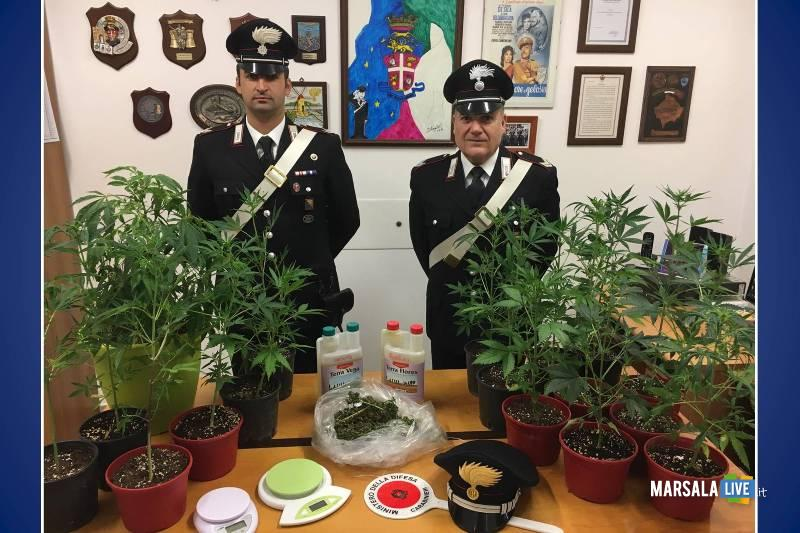 marijuana in casa, arresto Carabinieri DI DIA Augustin