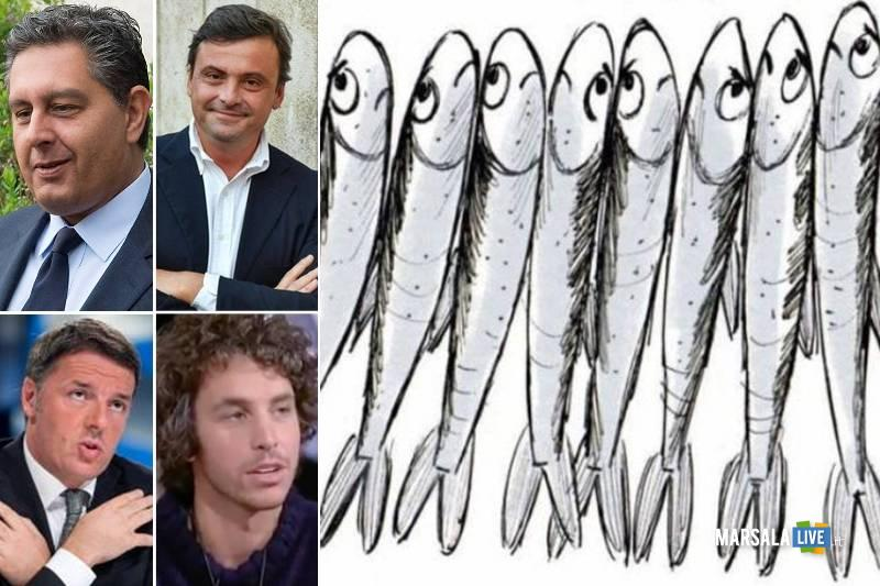 sardine, politici