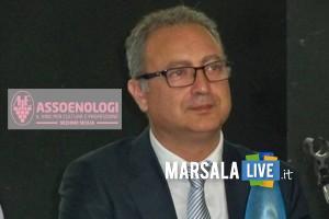 Giacomo-Salvatore-Manzo-enologo