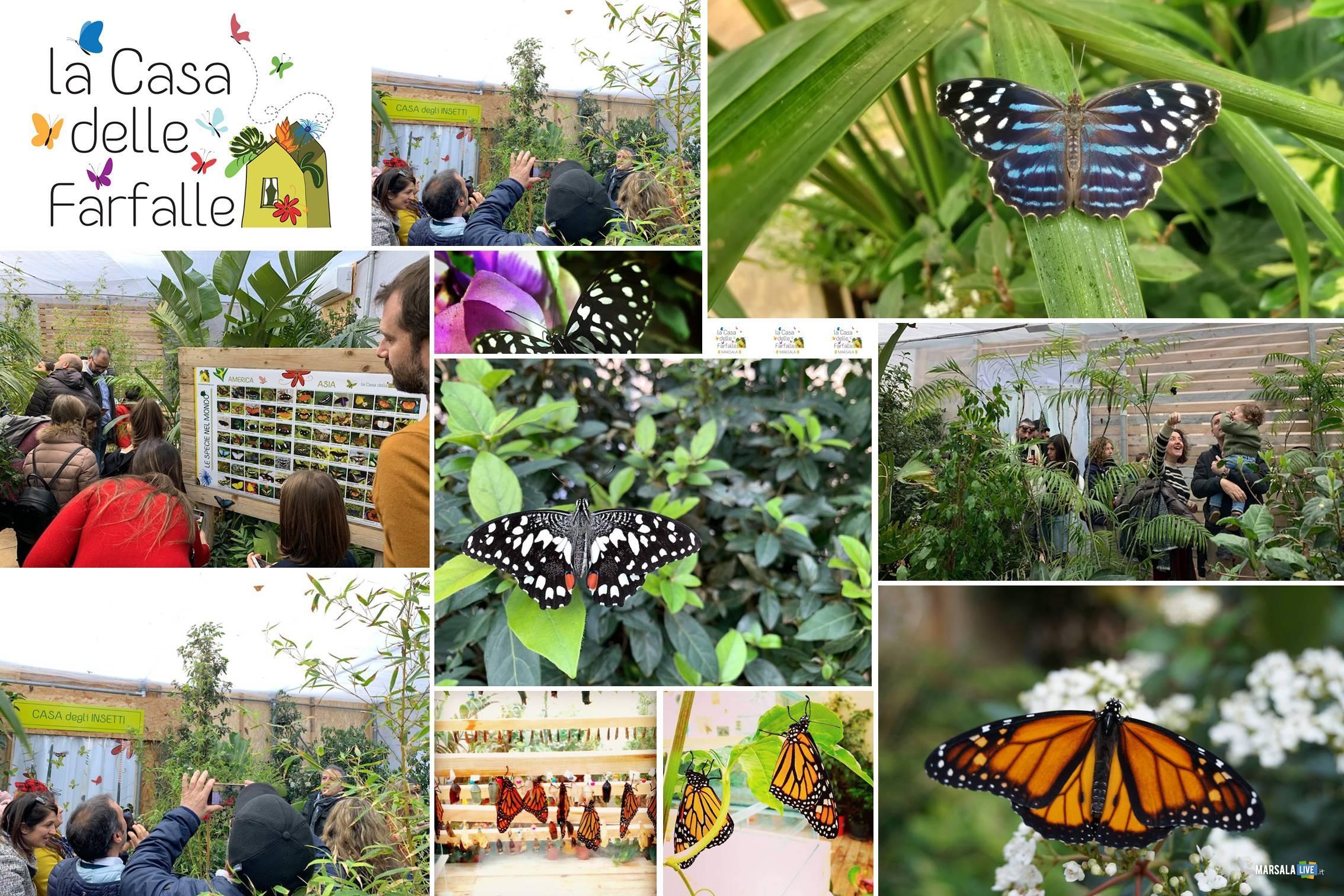 la casa delle farfalle marsala