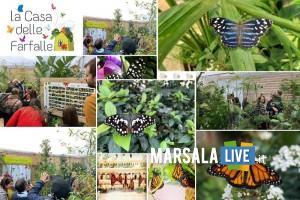 la casa delle farfalle - marsala